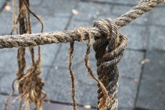 Rope loose knot. On grey textured floor tiles Stock Photography
