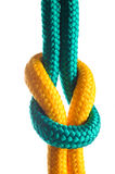 Rope with marine knot. On white background Stock Photo