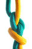 Rope with marine knot on white background Royalty Free Stock Photos