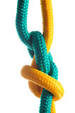 Rope with marine knot on white background. Stock Photos