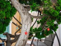 Stars Decorating a tree stock images