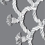 Rope, network Royalty Free Stock Photography