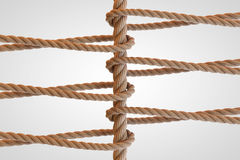 Rope Network, networking, connect, together loop. 3D Rendering Stock Photography