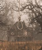 Rope noose hanging in creepy forest with haunted scene royalty free stock photography