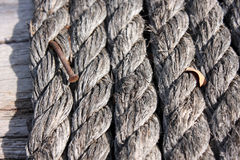 Rope and old rusty nail for background Royalty Free Stock Photography