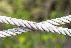 Rope part Royalty Free Stock Image