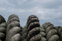 Rope. Rough rope for towing large boats full of green lichen stains Royalty Free Stock Photos