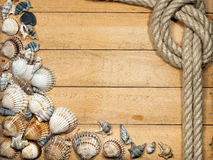 Rope and Seashells on Wooden Background Royalty Free Stock Photography