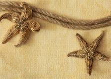 Rope and seastars Stock Image