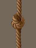 Rope Set 3. Vector Drawing Royalty Free Stock Photography