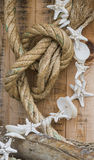 Rope and shell Stock Photo