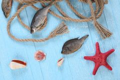 Rope shells starfish, dried fish Royalty Free Stock Image