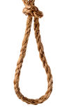 Rope in a slip knot on white Stock Photo