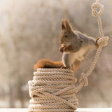 Rope with a split Royalty Free Stock Photography