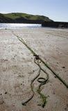 Rope sur une plage avec la mer et des collines à l'arrière-plan Photo libre de droits