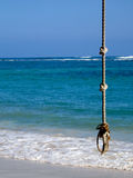 Rope Swing. Hangs in fron of the beautiful Carribean Royalty Free Stock Image