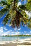 Rope swing at the beach on Nananu-i-Ra island, Fiji Stock Photography