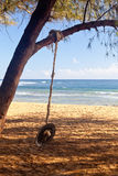 Rope swing on beach by ocean Royalty Free Stock Images