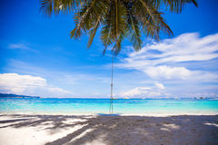 Rope swing on big palm tree at white sandy beach Stock Photos
