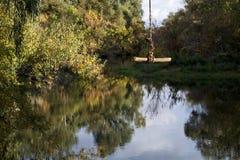 Rope swing at the Putah Creek in Davis, California, USA. Selective focus on rope swing at the Putah Creek in Davis, California, USA, on a fall day with clear sky Royalty Free Stock Image