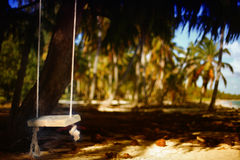 Rope swing in the tropical forest. On the beach Stock Photos