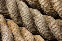 Rope texture. Texture of marine rope in close up Royalty Free Stock Photos