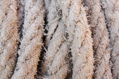 Rope texture Stock Images