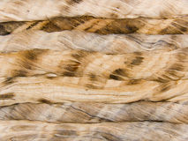 Rope from threads of a natural origin Royalty Free Stock Image