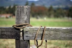 Rope tied around a pole Stock Images