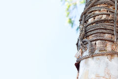 Rope tied around a wooden with clear blue sky and place for text Royalty Free Stock Images