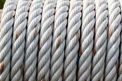 Rope tied around a wooden log Stock Images