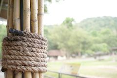 Rope tied bamboo together royalty free stock images