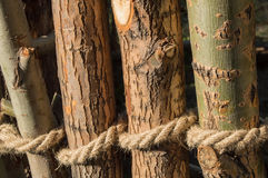 Rope tied in a knot around wooden poles, fence posts. Closeup Stock Photography