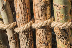Rope tied in a knot around wooden poles, fence posts. Closeup Stock Images