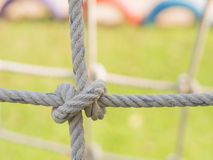 Rope tied in a knot. Stock Image