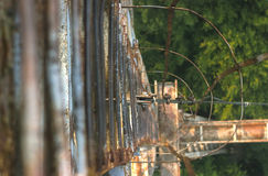 Rope with tied knot of a hanging bridge Royalty Free Stock Photography