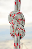 Rope tied in a knot Stock Photography