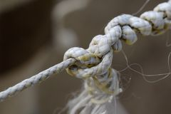 Rope tied in knots. Shallow depth of field. Rope tied in knots closeup. Shallow depth of field royalty free stock image