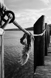 Rope Tied To Wooden Piling In River Royalty Free Stock Photos