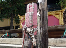 Rope tied to wooden poles Royalty Free Stock Image