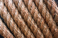 Rope tied Stock Images