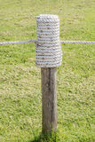 Rope tired in wooden pole with green grass background. Royalty Free Stock Image
