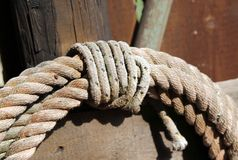 Rope to tie the horses on the farm Stock Photos