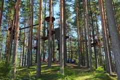 Rope trail in the trees / Ropes course in the trees royalty free stock photo