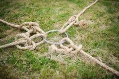 Rope tug of war Royalty Free Stock Photo