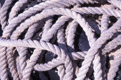 Rope on Tyre. A tangling rope rests on an old tyre Stock Images