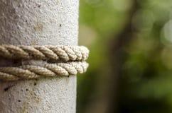 rope upp cirkeln på metallpolen, bundet rep på polslutet 2 poler med 2 rep Selektivt fokusera royaltyfri fotografi