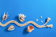 Rope with various sea shells on blue background Royalty Free Stock Images