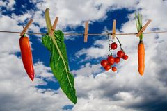 Rope with vegetables. Hanging vegetable with clouds as background Stock Images
