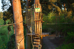 Rope Walk. High wire forest adventure course of rope bridges, Swings and slides Royalty Free Stock Image